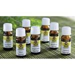 Pure Essential Oils Wholesale - Pure Essential Oil - Single Note Essential Oils