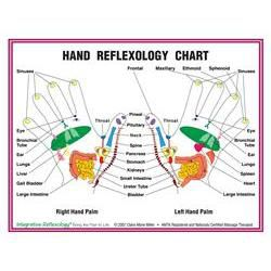 8.5' X 11' Foot And Hand Charts Set