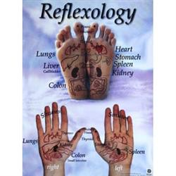 Reflexology Hand And Foot Reflex Chart 18X24 Inch