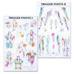 Trigger Point Charts Set(I & II) Laminated