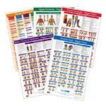 Kent Trigger Point Charts - Set Of 5