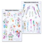 Trigger Point Charts Set(I & II Laminated