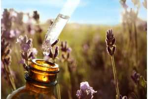 Discover Aromatherapy Massage: A Power-Packed Sensory Experience