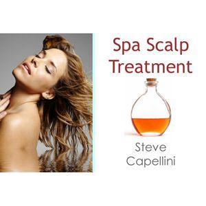 Steve Capellini Ce Course - Spa Scalp Treatments