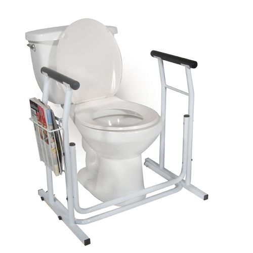 Stand Alone Toilet Safety Rail