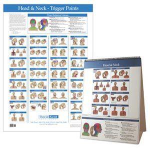 Kent Trigger Point Charts - Head & Neck