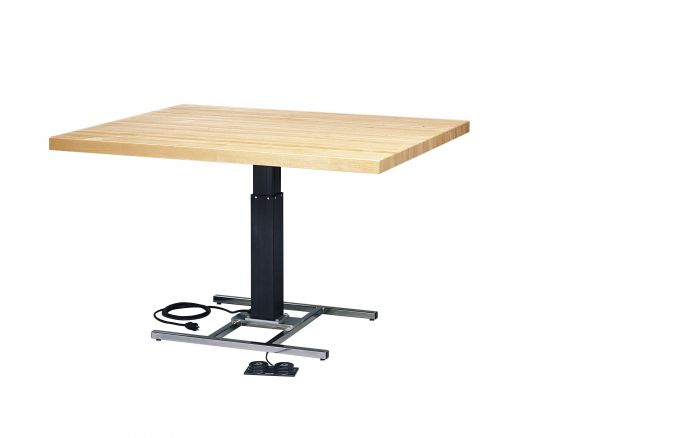 Hi-Low Professional Work Table