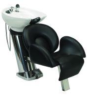 Paragon® Shampoo Backwash System™