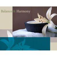 Balance & Harmony Marketing Cards
