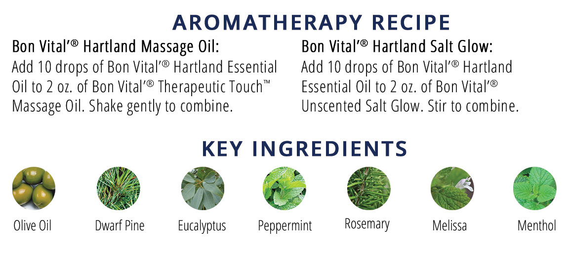 Aromatherapy Recipe and Key Ingredients