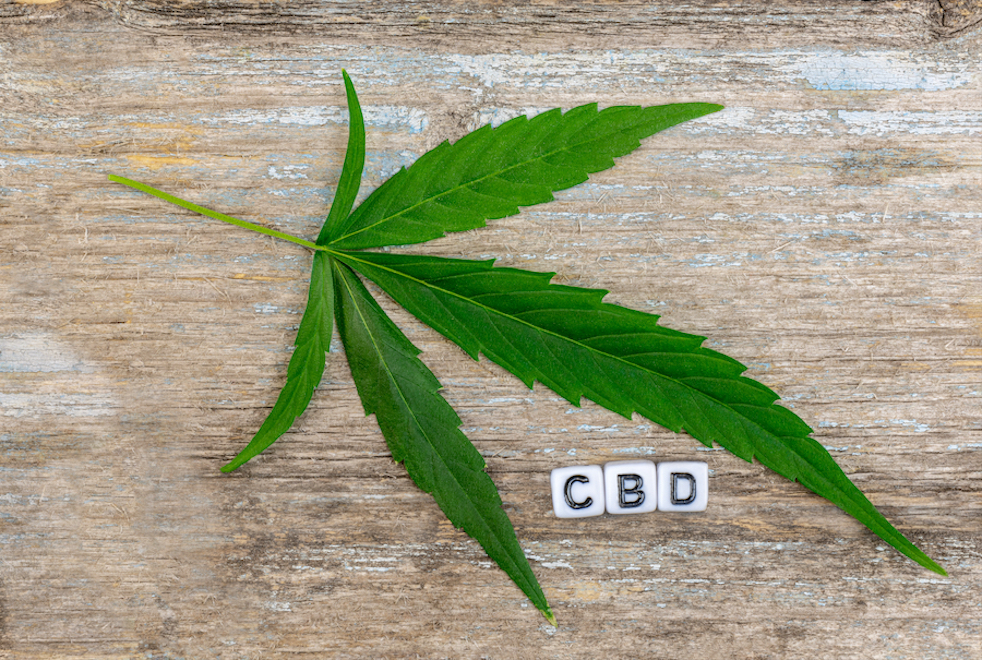 Learn about CBD Clinic Massage Cream & Pain Relief